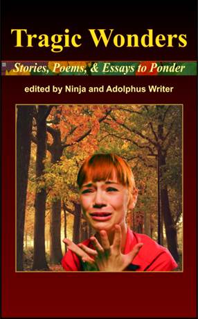 Tragic Wonders - Stories, Poems, and Essays to Ponder cover image